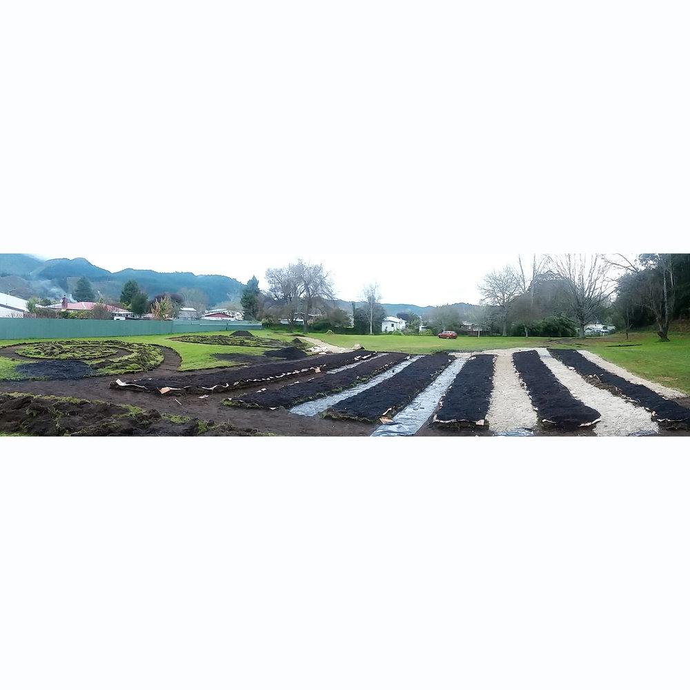 Kawerau Urban Food Forest at Kawerau Life Konnect