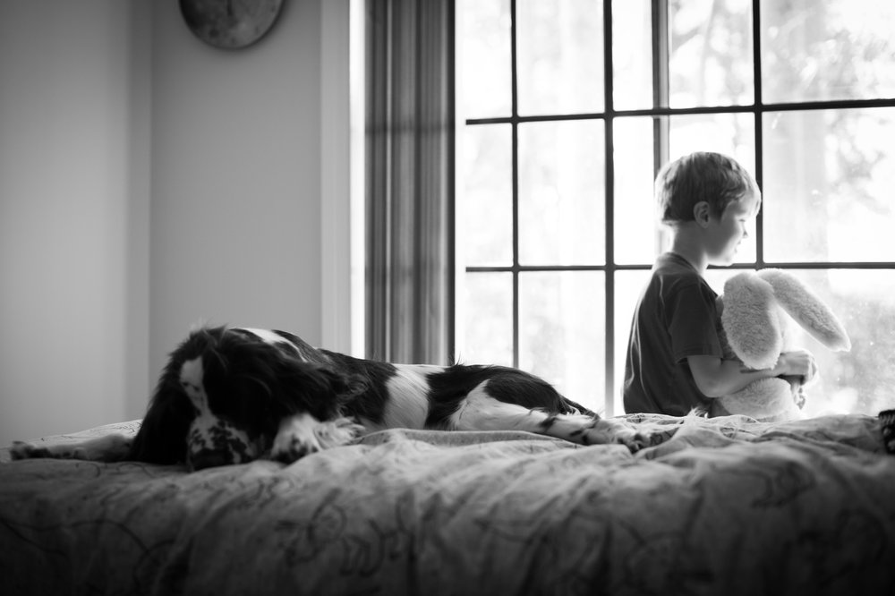 boy and dog on bed central coast pet photography