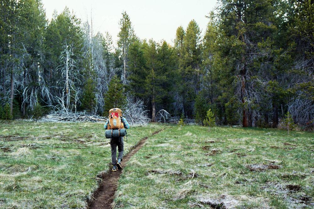 Wilderness Survival -
