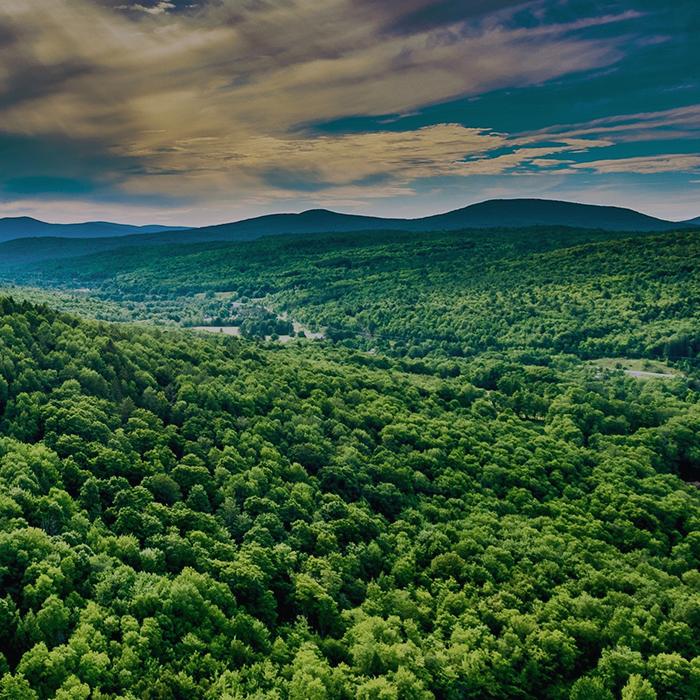 NEW YORK - June 29 - July 1Hunter Mountain