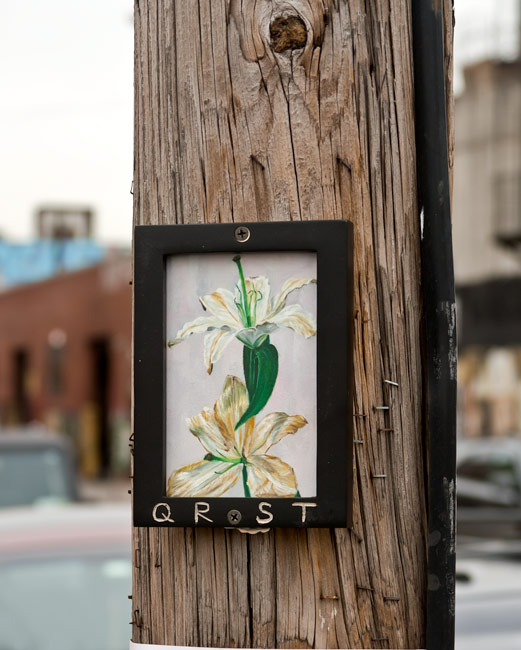 memento mori 15  oil on paper, framed and mounted  |  east williamsburg, brooklyn  |  2014