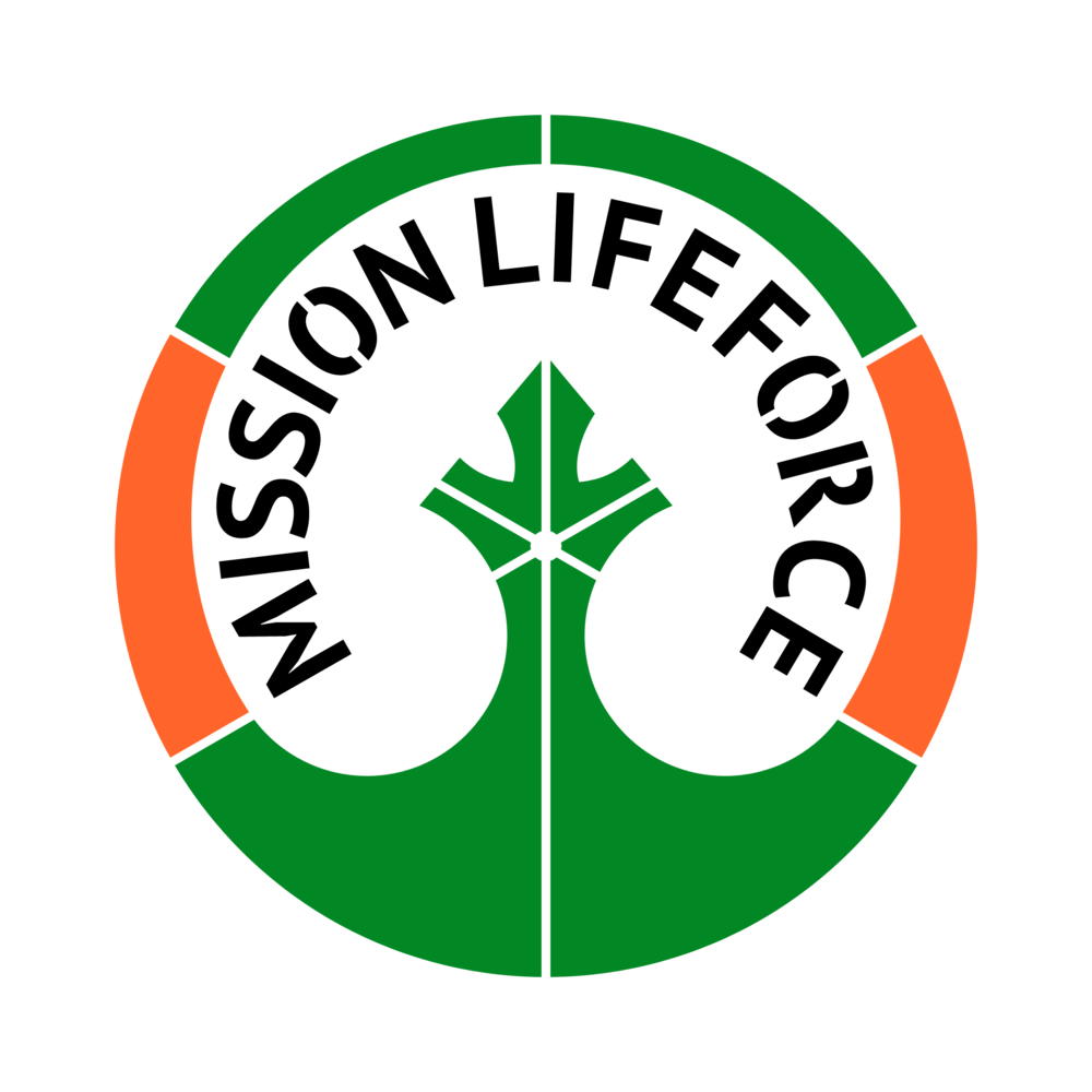 MISSION LIFEFORCE ICON - link to folder with various file formats you can use to print badges, T-shirts, stencils -