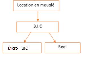 régime réel et micro-bic