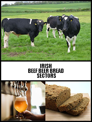 Irish Beef Beer Bread Sectors - By Seamus Maye - International Small Business AllianceCommissioned by Luke Ming Flanagan MEP