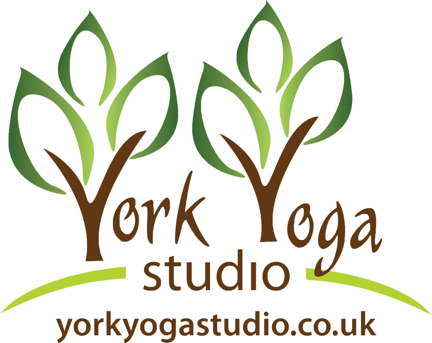 York Yoga Studio
