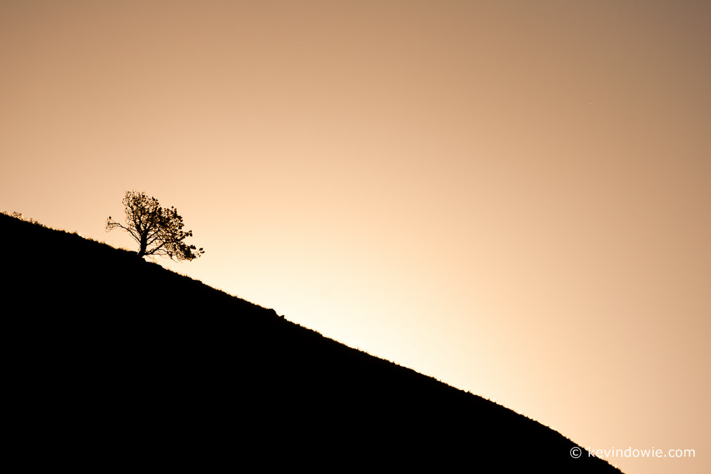 Lone tree on horizon, Drakensberg Mountains, South Africa