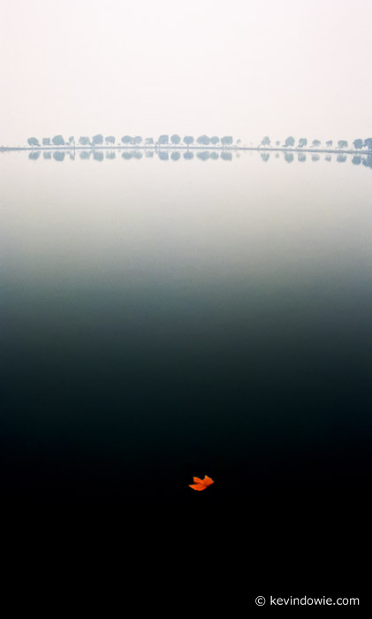The leaf, West Lake, Hangzhou, China