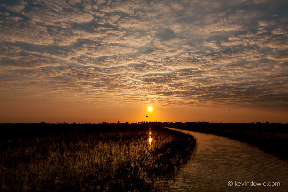 Sunset, Okavango Delta.