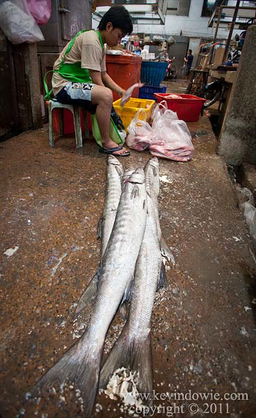 Cleaning fish, Bangkok.