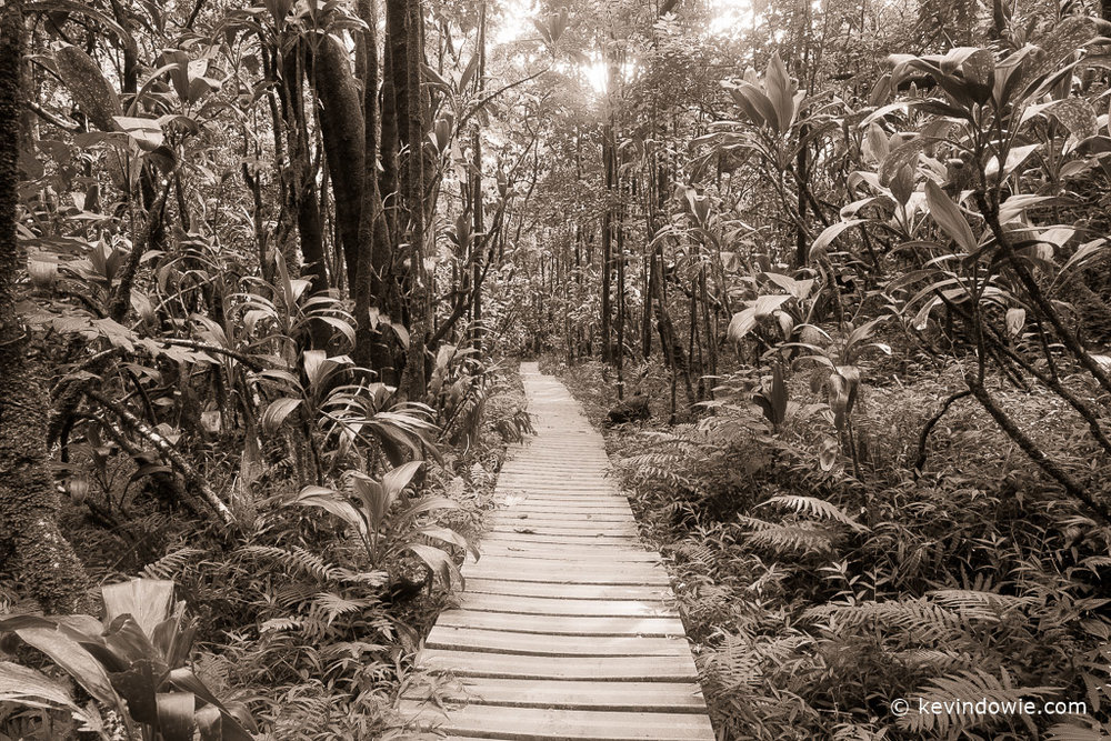 The Boardwalk, Pipiwai Trail