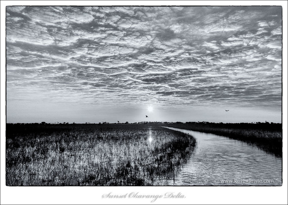 Okavango Delta sunset, Monochrome treatment.
