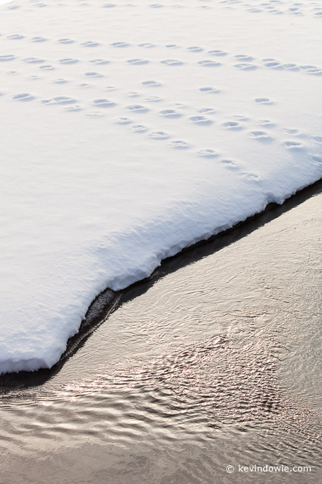 Footprints and water ripples, Hokkaido