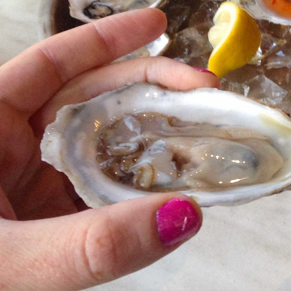 Oyster at the Oyster Bar
