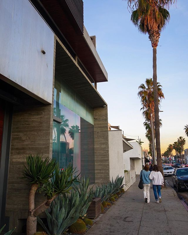 Best building on Abbott Kinney Blvd #archdaily #bonjourtristesse_losangeles