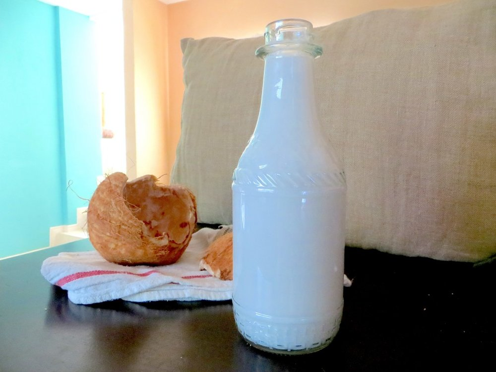 homemade-raw-coconut-milk-www-letsregale-com.jpg