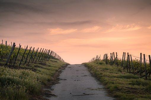 countryside-1835847__340.jpg
