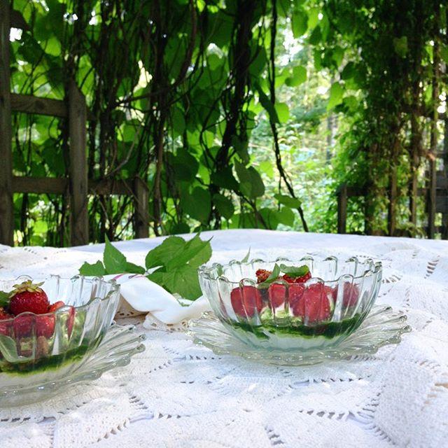 Talkkunapaistosta, mansikoita ja basilikastiketta jogurttikerman kera Pohjois-Savon menusta. #moderniamaakuntaruokaa #maakuntaruoka #suomi100 #pohjoissavo #syödäänyhdessä #thisisfinland