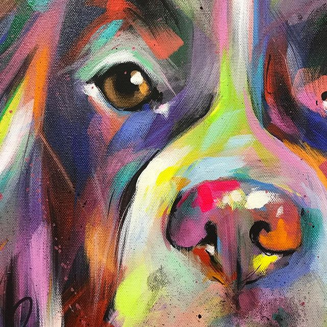 Spaniel close up 🎨😁 . . . . . . #spaniellove #springerlove #springerspaniellove #springerspanielsofinstagram #englishspringerspaniel #springerspaniellovers #dogart #dogartist #dogartists #dogpainting #dogpaintings #dogpaintingsofinstagram #petportrait #petportraits #custompetportraits #multicolour #multicoloured #ontheeasel #colourful #colourfulllife #artoftheday #instaart #instaartist
