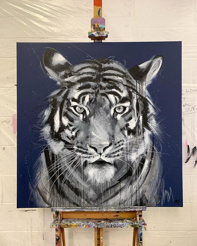 "With three subspecies already extinct I hope we can save the rest...such piercing beauty, he deserved a BIG canvas so went with a wall filling 40"" square in the end and I am pretty pleased with how he turned out 💙💙X . . . . . #tigerart #tigerpainting #wildlifepainting #wildlifepaintings #wildlifeart #wildlifeartist #wildlifeartists #ontheeasel #artstudio #artstudios #contemporaryart #contemporaryartists #contemporaryartwork #contemporaryartcollector #contemporaryartcurator #savethetigers #savethetiger #savethetigersavetheworld"
