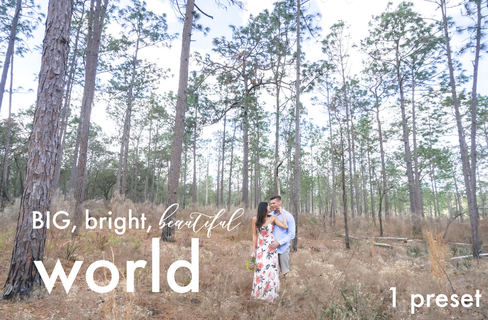 big bright beautiful world cover photo.jpg