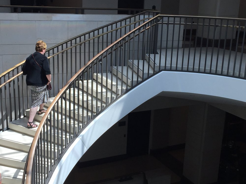 Climbing the marble stairs on Capitol Hill for Infertility Advocacy Day May 18, 2018.