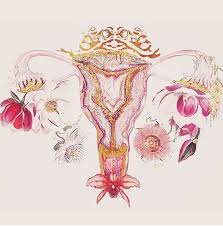 What a wonderful way to envision your reproductive system.
