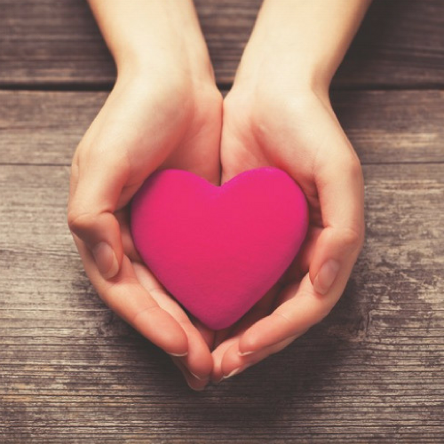 Rosalind-Image 2 - Hands holding a heart.png