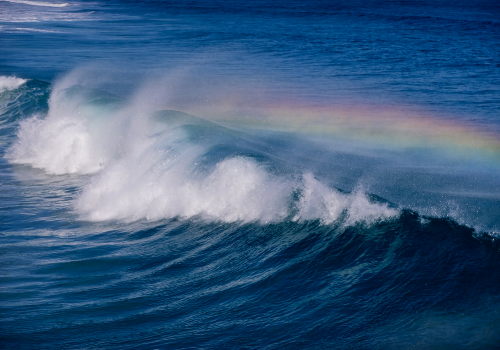 Rosalind - Image 6 - wave with rainbow.png