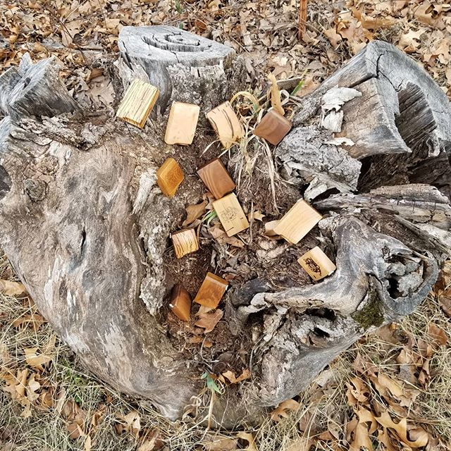 In our natural habitat. Have a great weekend people! oddobox.com . #woodenbowl #oddobox #woodpipe #treestump #naturalwoods #pipes #smokeapipe #smokebowls #naturalhabitat #outdoors #smoke #autopipe #instapipe #oklahoma