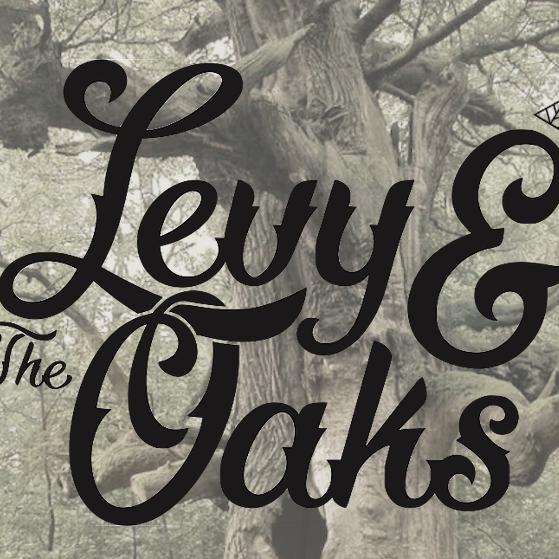 11/30 Levy Oaks W/Mercury Bros.