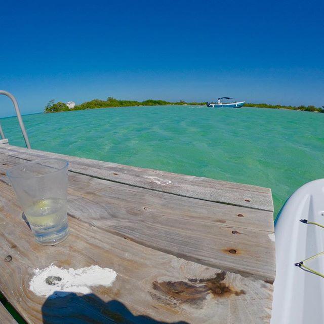 Floating...drinking...🏖🌴🍹 . . . #exploreshreddiscover #floating #daydrinking #drunk #belize