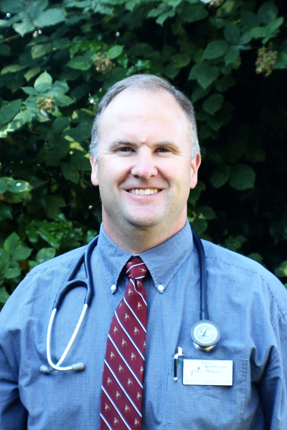 Dr. Brent Johnson