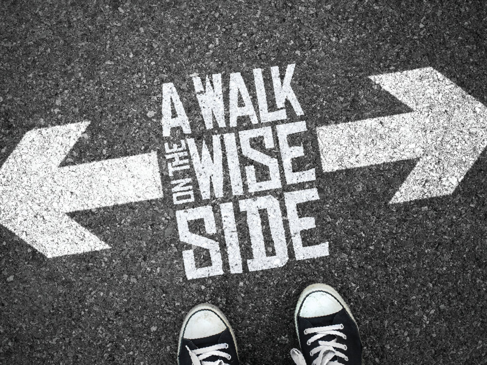 A-Walk-on-the-Wise-Side_screen_1024x768_02-2.jpg