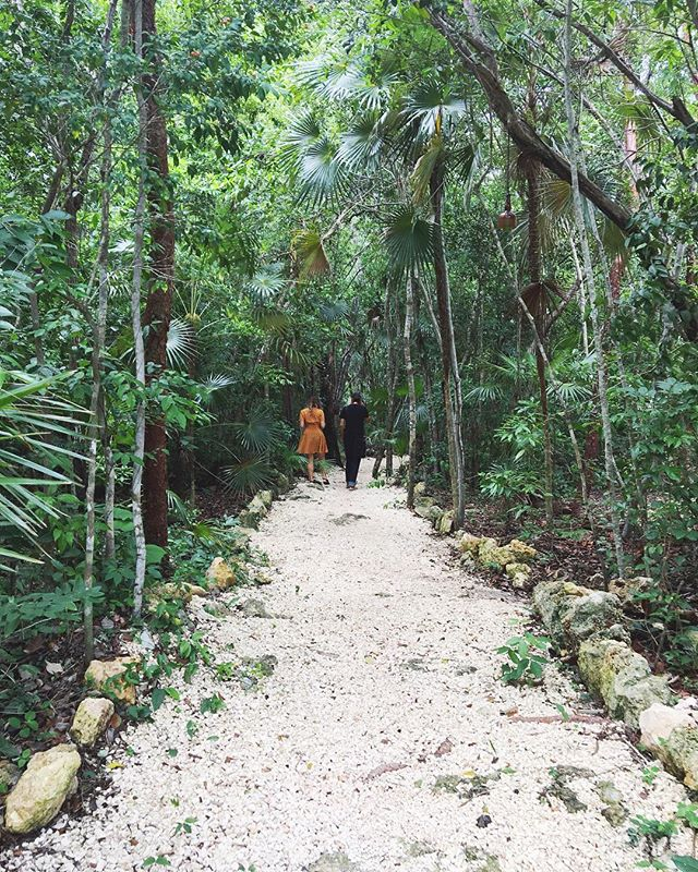Walking to class 💚📝💭🖌🙌🏾 #EnterTheMagicJungle for an incredible experience for creative women 🙌🏾 • Registration for 2018 retreats is open: 🔹The Magic Jungle Inspiration✨ August 9-13 🔸The Magic Jungle Experience 🍃 October 23-28 ✨ enterthemagicjungle.com ✨ Tulum, MX