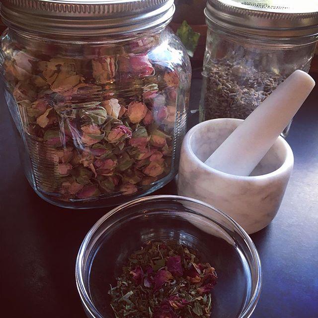 Making catnip, mint and rose tea 🍵 🌹 🐈