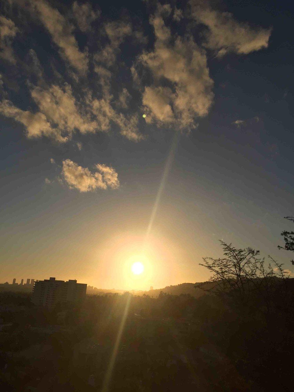 SunDown - Reese Halter.jpg