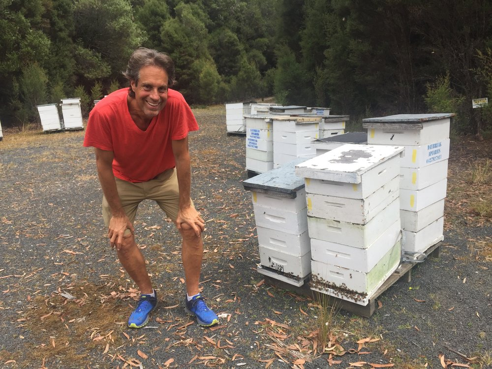 Tasmania Honyebees Leatherwood Honey - Reese Halter.jpg