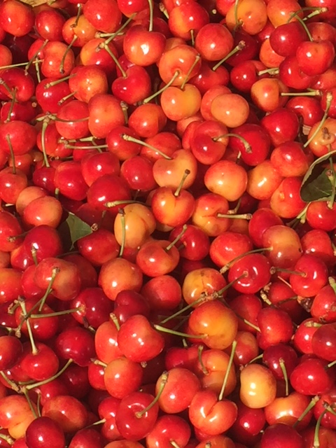Cherries are brimming with antioxidants, which help to slow aging. Sour cherries have more antioxidants than blueberries.  The dark plant pigments, or, anthocyanins, in cherries also reduce pain associated with inflammation. Cherries are delicious for breakfast, lunch or dinner.