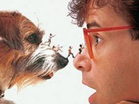 Aug. 18 | Honey I Shrunk the Kids
