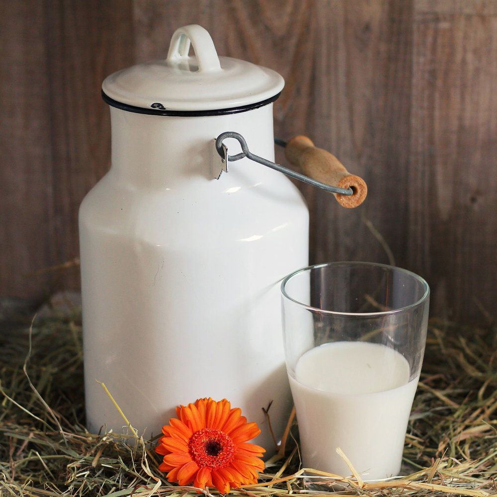 LOCAL DAIRY  -