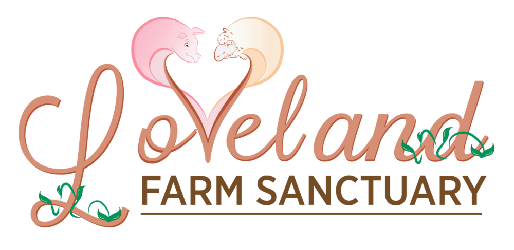 Logo for 501(c)3 nonprofit whose mission is to rescue, rehabilitate and offer residence to abused and neglected farm animals.