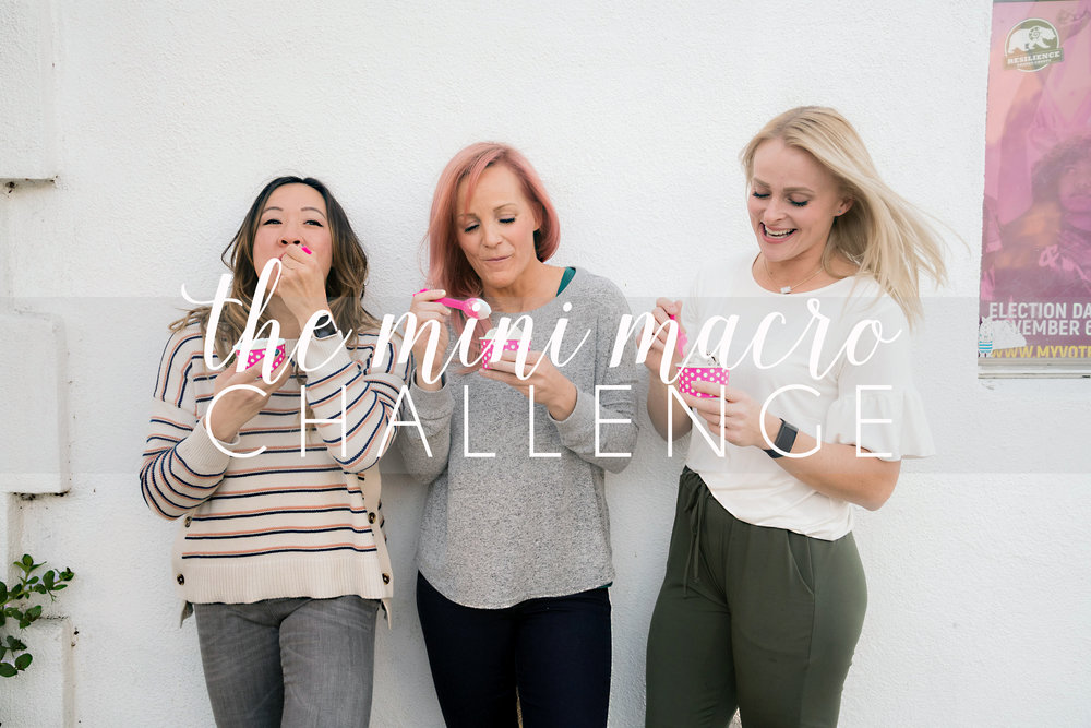 The Mini Macro Challenge Cover 3.jpg