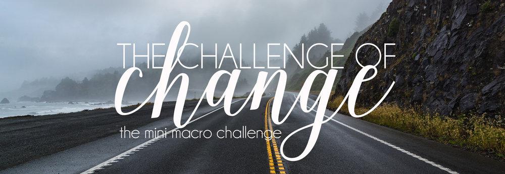 The Challenge of Change.jpg