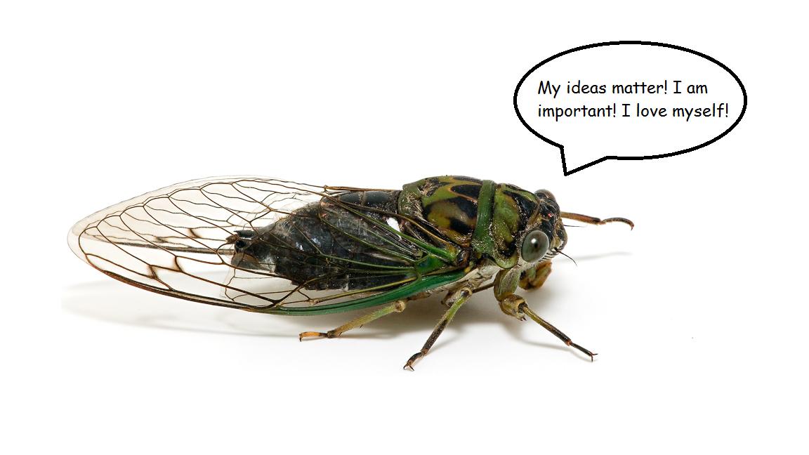 confident cicada