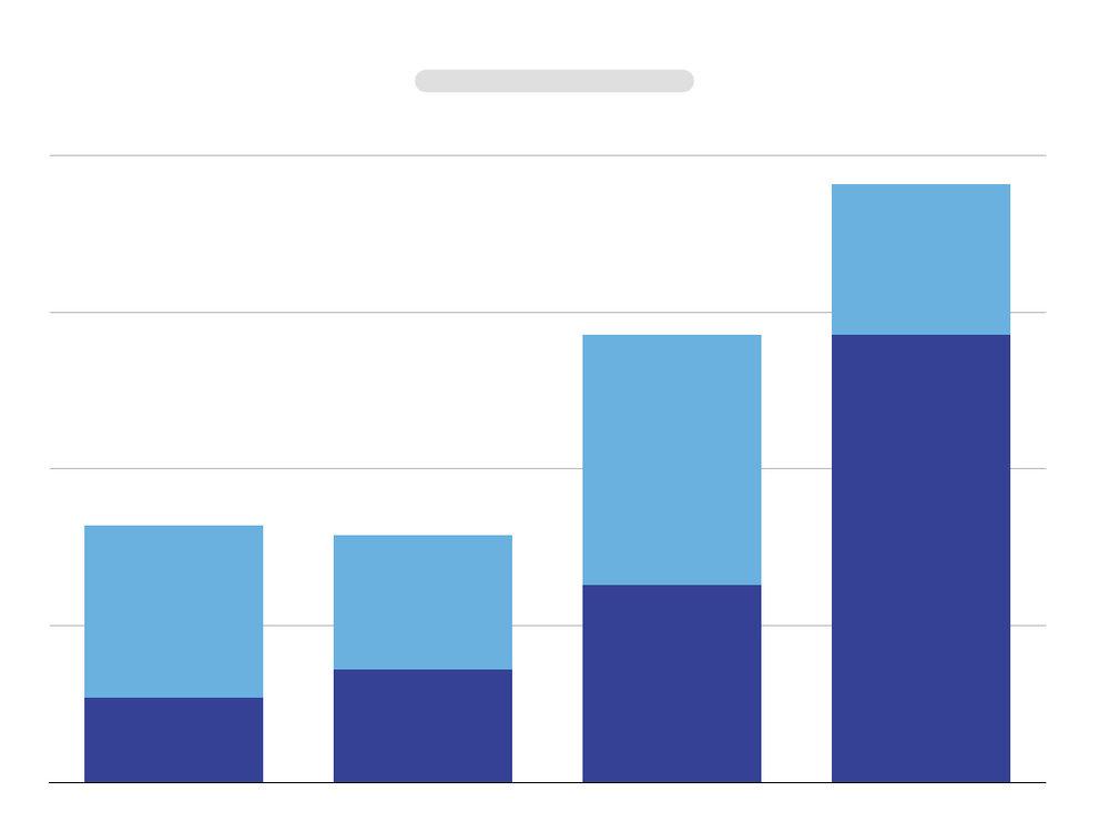 Revenue breakdown visual