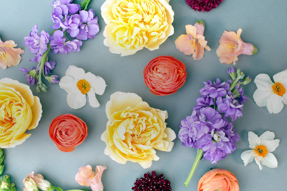 Floral Subscriptions -