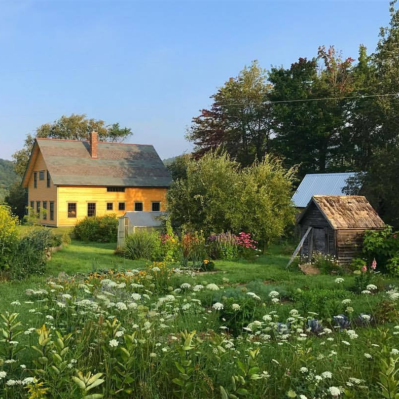 Visit a medicinal herb farm, wander through the medicine gardens at our homestead, walk softly through the sun-dappled forest with a harvesting basket on your arm ...              spend time in the world of the plants and animals, and feel yourself at home.