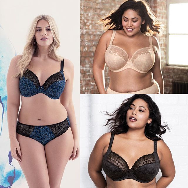 Do you love the Jodi from @elomilingerie? It's definitely one of our fave fashion styles. If it works well for you, we have some great news: this same cut will be available in basics, renamed as the Kim! We will be having a trunk show and pre-order trunk show all day on June 16th! Call today to make an appointment and be the first to experience the all new Kim! We hope you'll join us! . . . . . . #revelationinfit #revelation #demystifyingthedd #elomi #elomilingerie #kimfitevent #kim #fittingparty #trunkshow #preorder #lovelingerie #brafitting #brafitspecialist #basics #lace #lingerieaddict #intimates #losaltos #dtlosaltos #downtownlosaltos #sanjose #jodi #paloalto #mountainview #siliconvalley #lovetheskinyourein #bras #lingerieparty