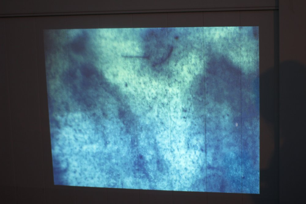 M DN GHT BLUE , Caroline McCraw