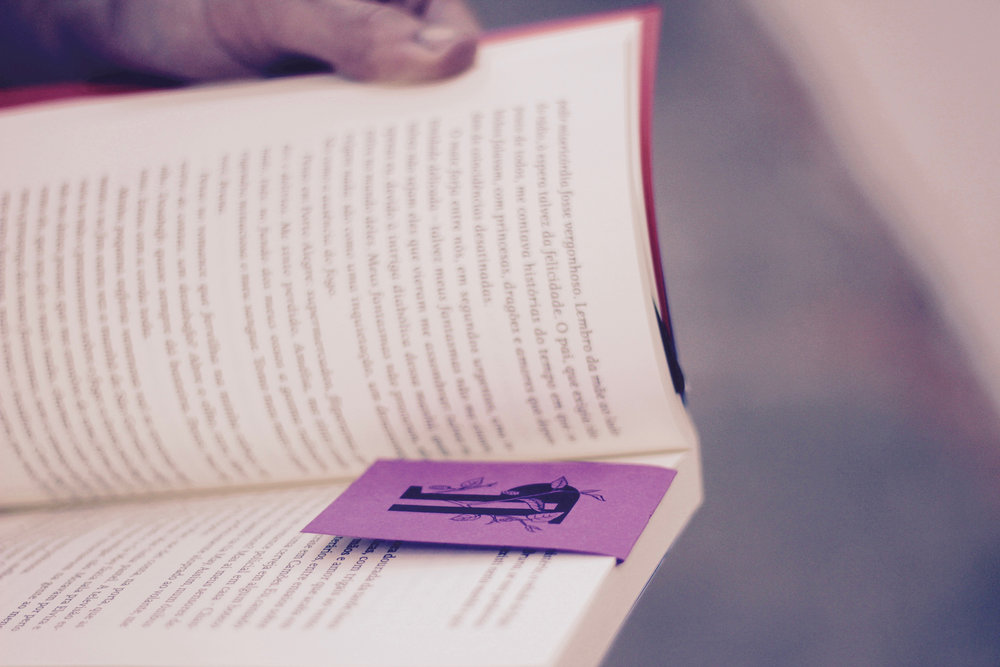 livro, gramática, amora consultoria linguística.